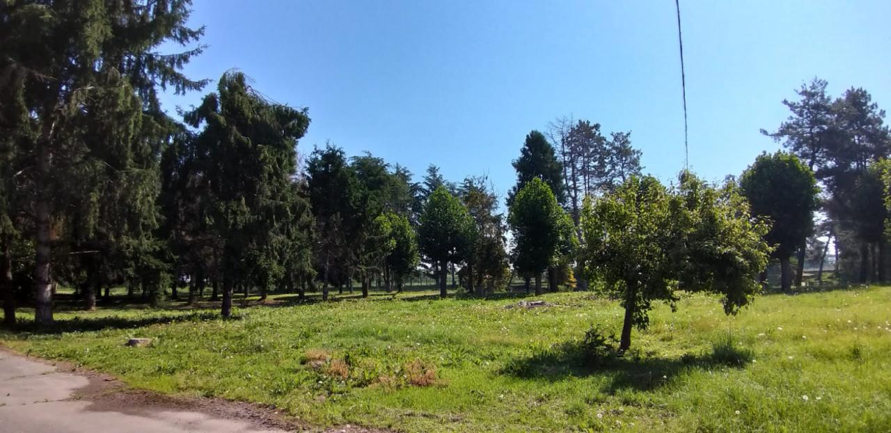 IMMOBILE COMMERCIALE in VENDITA a CRESCENTINO